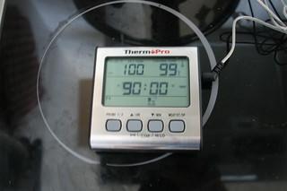 16 - Monitor temperature / Temperatur überwachen