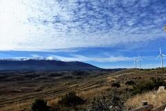 Molinos al viento frente al Moncayo - Grisel