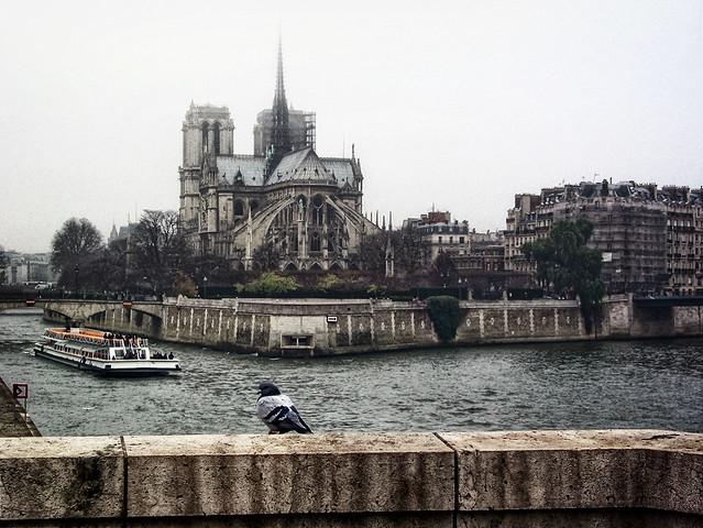 Notre Dame + rondvaartboot