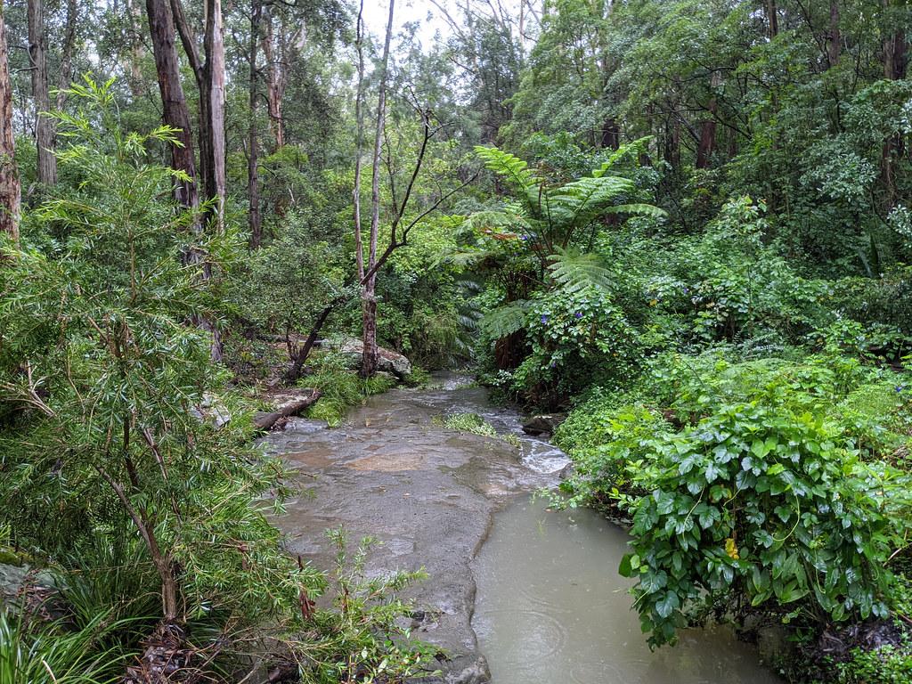 Creek flooded
