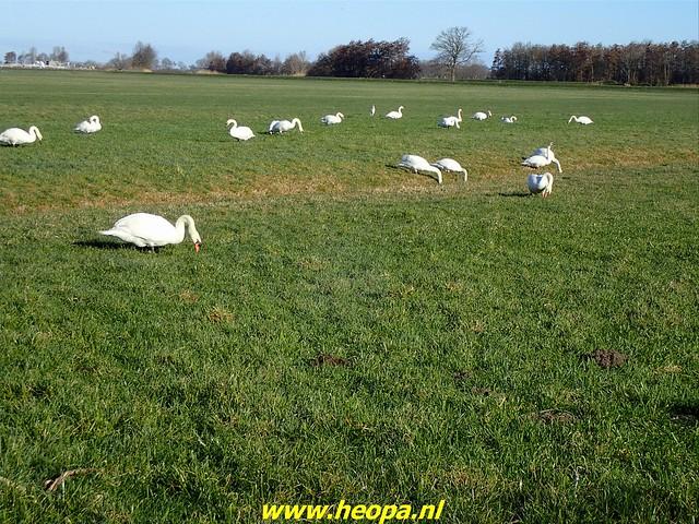 2021-03-05 Baarn-Amersfoort Vathorst (17)