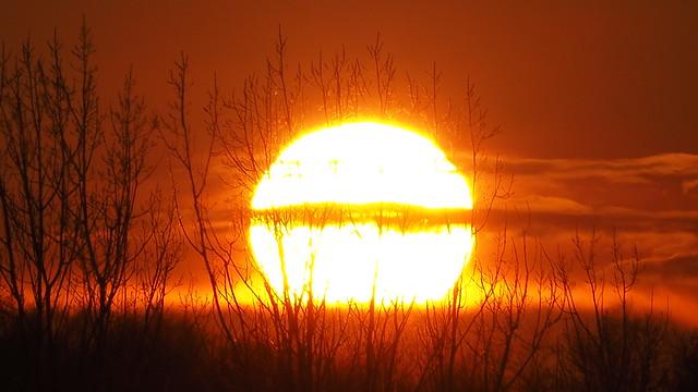 The Majestic Sun