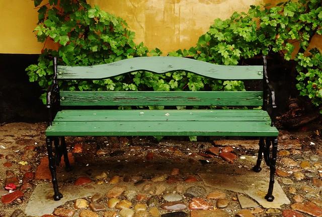 Green bench in rain