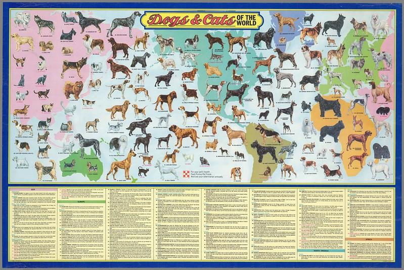 Map poster Dogs and Cats of the World
