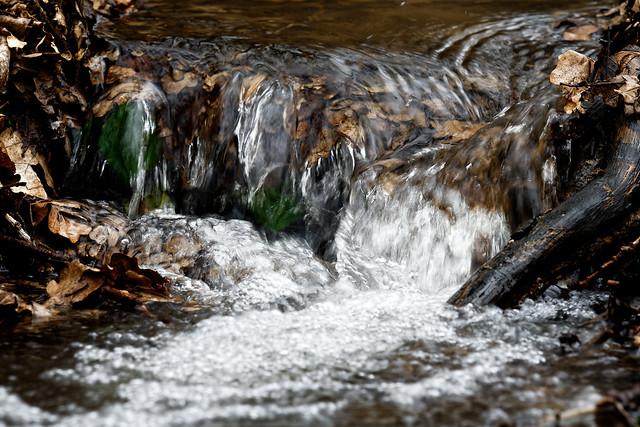 Wasserfall (norddeutsch)