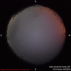N-2021-03-08-0510_f