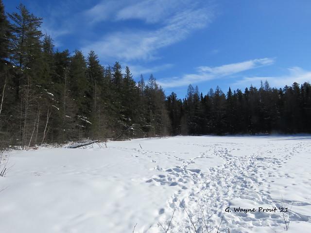Jack Pine Lake