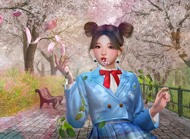 🌷 Blossom 🌷