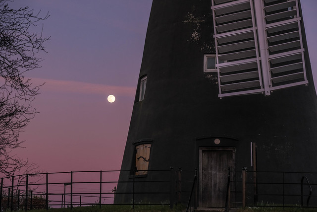 Holgate Windmill, February 2021 - 22