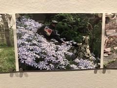 Photo Brut at Folk Art Museum