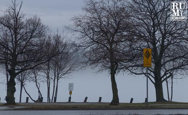 Fog Along the River