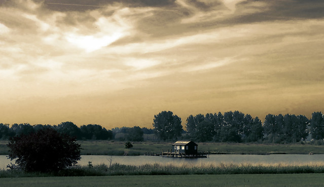 De Vogel - The Netherlands