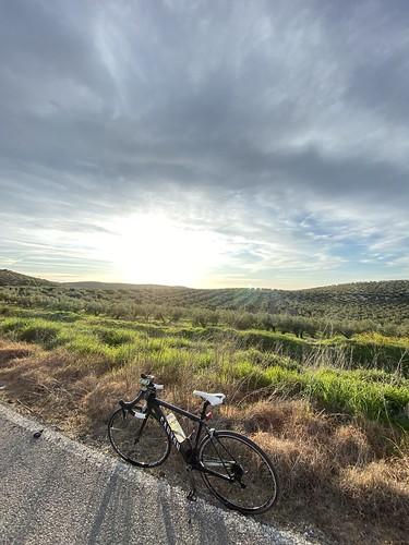 Bicicleta Canyon de carretera s contraluz