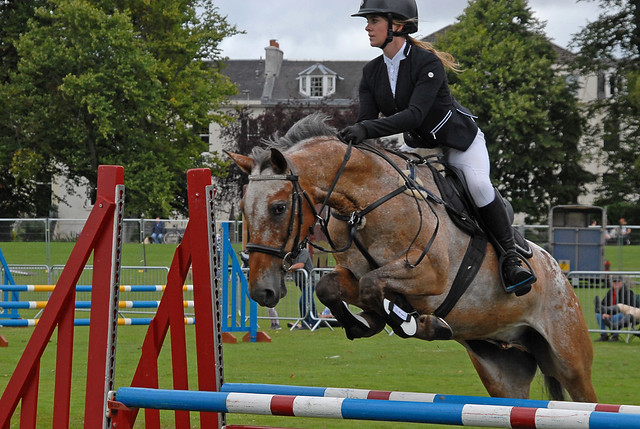 Showjumping  144 - Perth Agricultural Show 2018