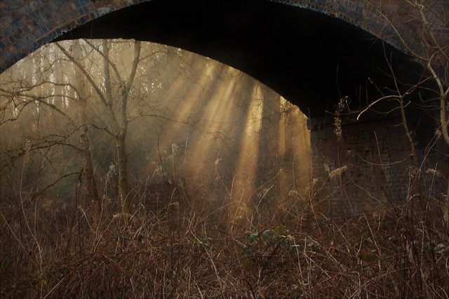 Under the bridge and out of the sky
