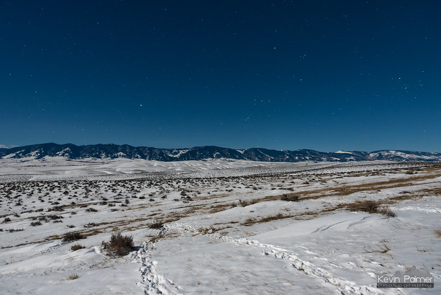 Deer Tracks to Orion