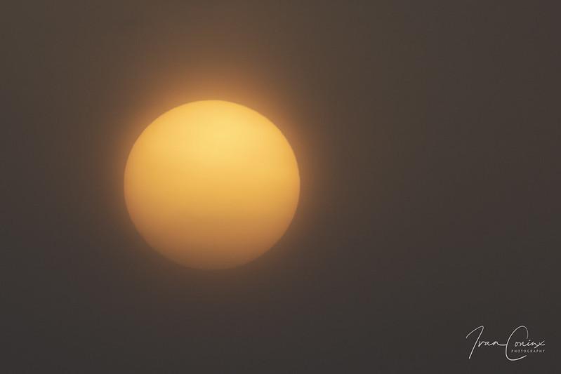 Sun – Mechelen – 2021 03 03 – 01 – Copyright © 2021 Ivan Coninx