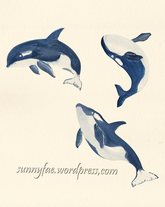 watercolour orca whales