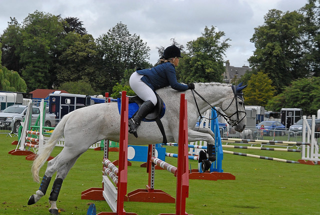Showjumping  146 - Perth Agricultural Show 2018
