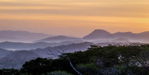 sunrise canopytower soberanianationalpark canalzone panama