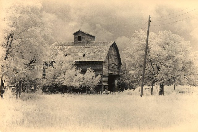 435 - Gosper County Granary - Caffenol-C Print