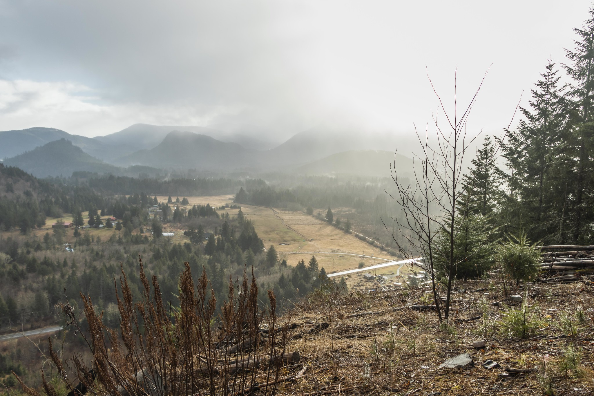 Eastern valley view from the clear-cut