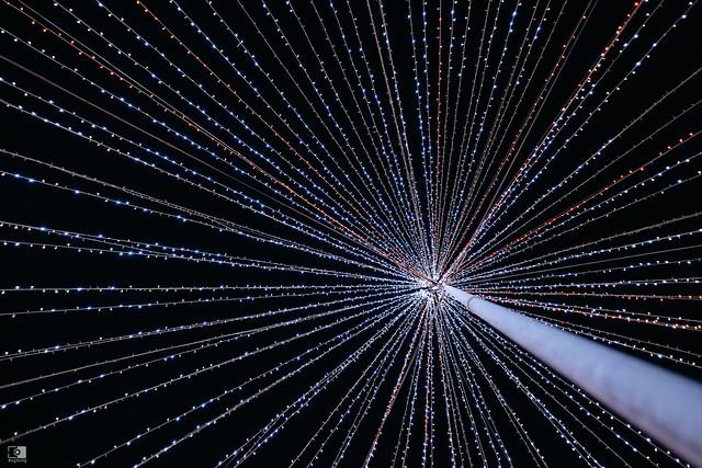 常日,或許終將成為最美的風景:Sony A7C | 70