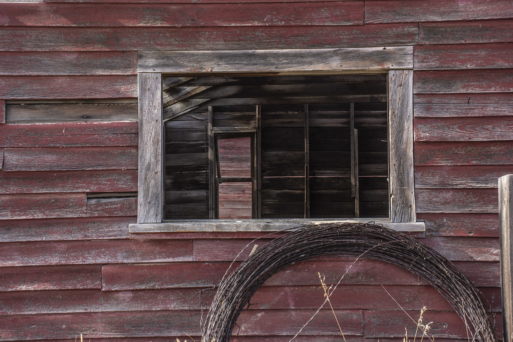 A window to our past