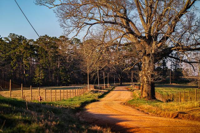 Chambers County Road 202