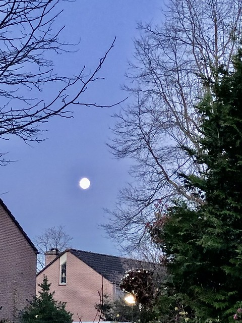 full moon in the western sky