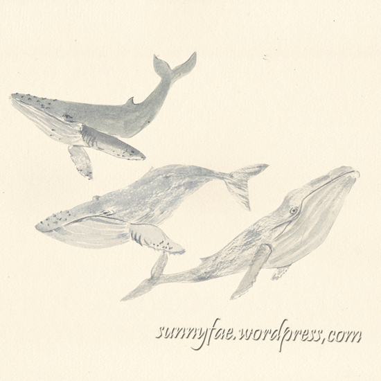 watercolour humpback whales