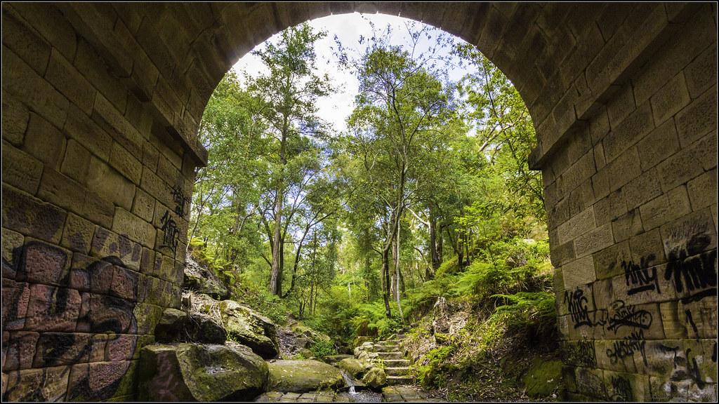 2014 Under the Lennox Bridge, Glenbrook, NSW