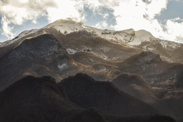 A LATE SNOWFALL (Una nevicata tardiva)