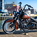 Softail Mexican style