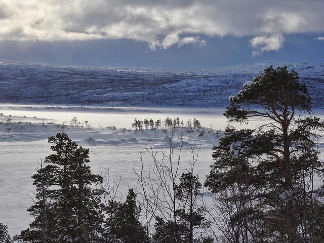 Parque Nacional Stora Sjofallet (Laponia, Suecia)