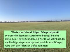 Rasenfeld M�rz 2021