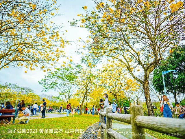 廍子公園2021 黃金風鈴木 台中景點