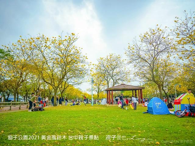 廍子公園2021 黃金風鈴木 台中親子景點