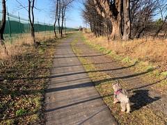 Pathway.