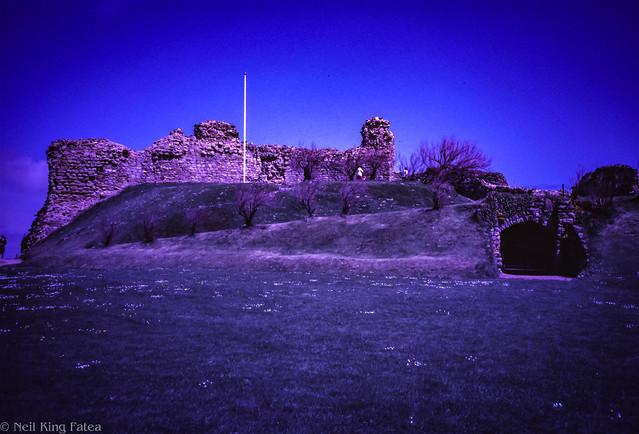 Hastings 83 - Photocredit Doug King -2