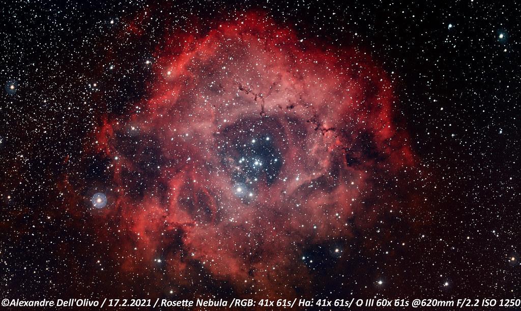 Rosette RGBHOO_2