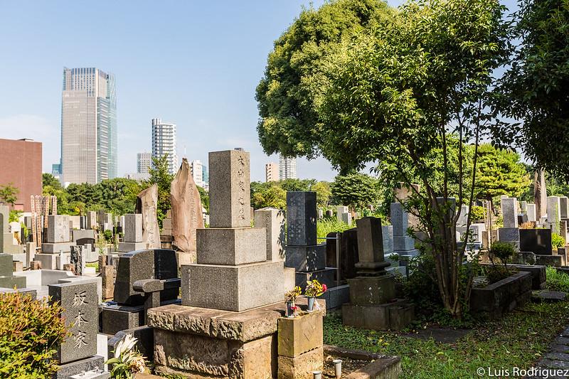 Paisajes del cementerio