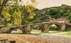 Puente sobre el rio Esca.  Burgui.  Navarra.