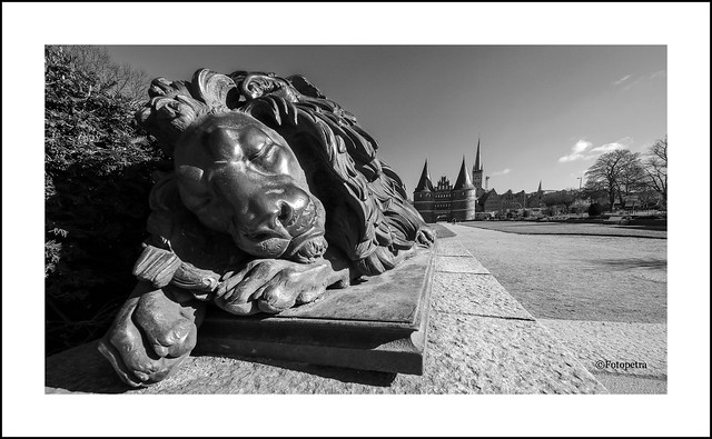 Der Löwe schläft......
