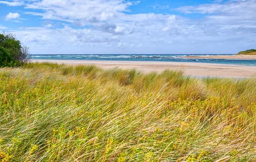 luminosity7 nikond850 launceston tasmania australia northeasterntasmania pipersriver weymouth themouthofpipersriver nativegrasses sand seascape sky clouds