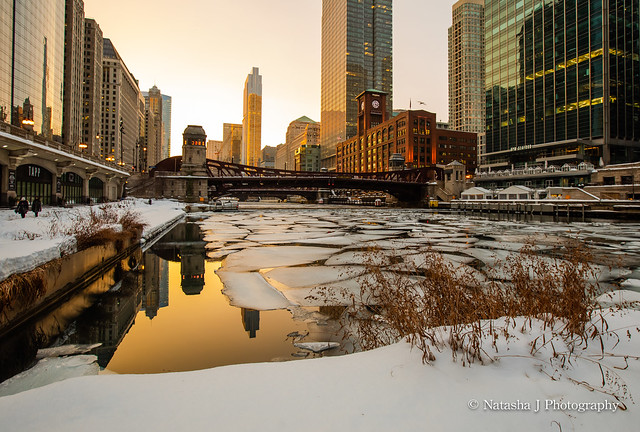 Happy International Women's Day! Chicago River
