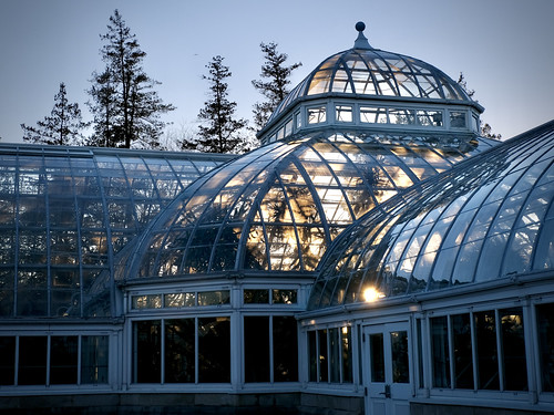 greenhouse conservatory glass panes building glassbuilding light sunset sun goldenhour contained container newyorkbotanicalgarden bronx nyc newyork