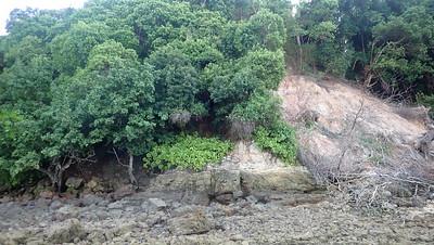 Landslide at Sentosa, Apr 2021