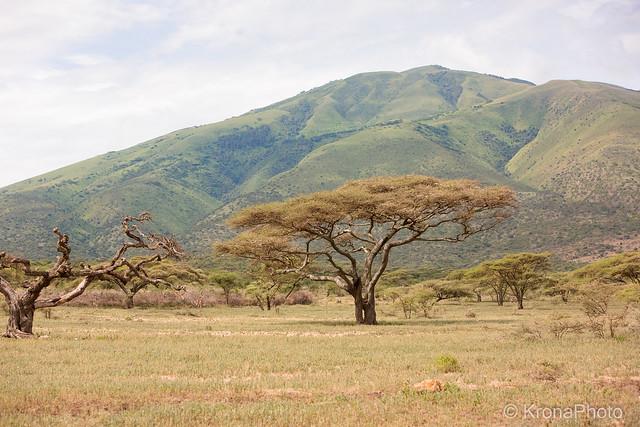 Landscape of Ngorongoro, Tanzania