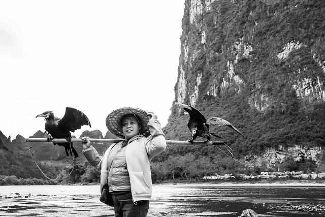 The lady from the Li river